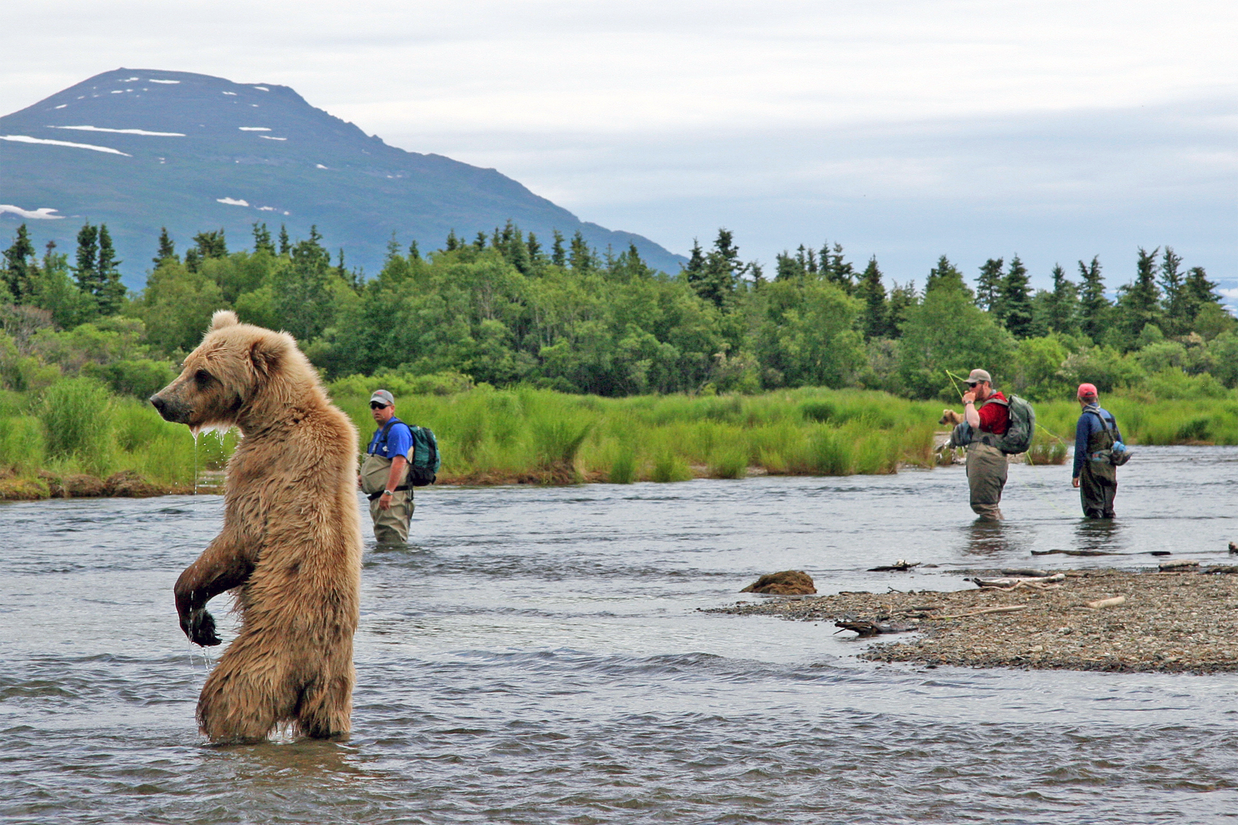 In alaska photo 50