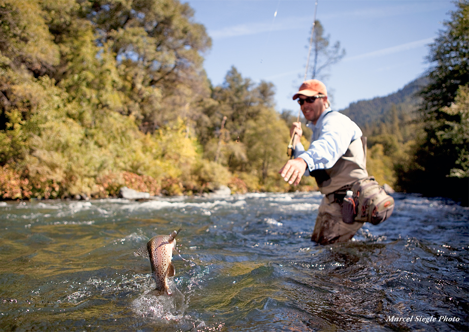 Image result for Fishing in river