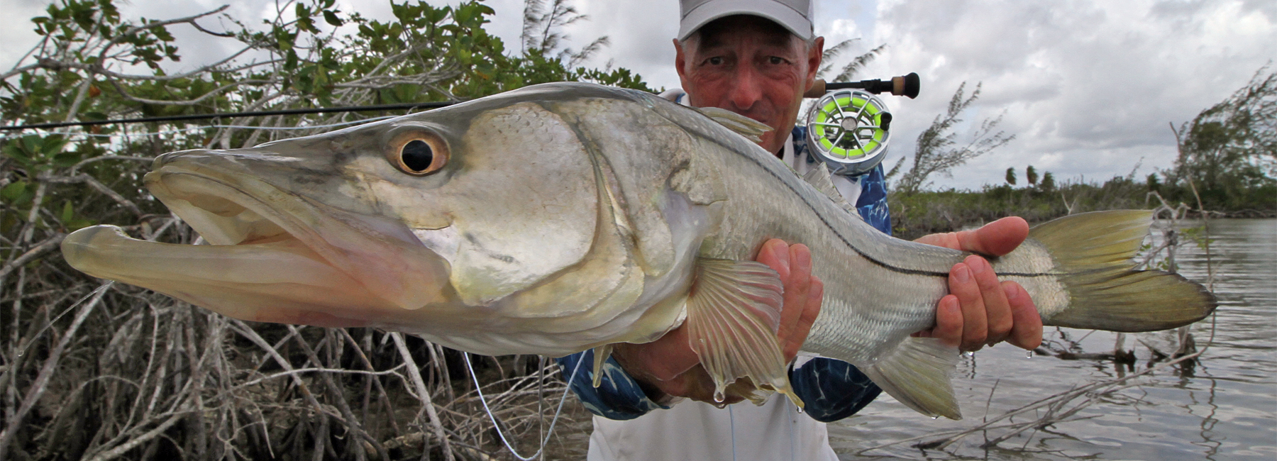 snook fly fishing snook fly fishing lodges
