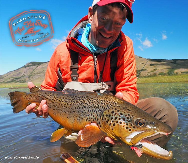 Brown Trout Fly Fishing Brown Trout Fly Fishing Lodges